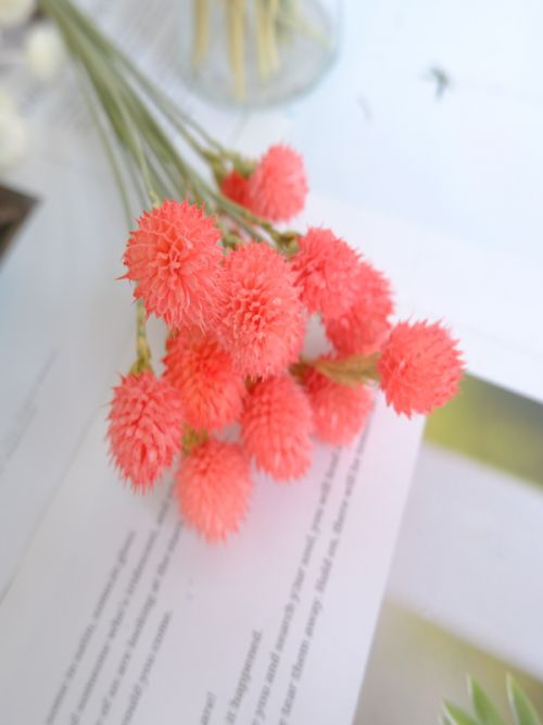 Pink Strawberry Fruit Dried Flowers